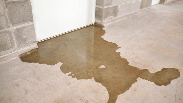 a. Water Restoration Service