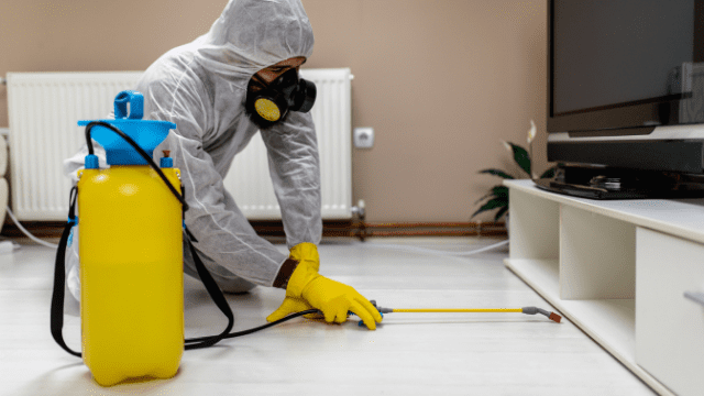 Professional Home Sanitization Services
